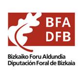 Diputación Foral